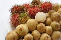 Äter tropiskt sött smakligt för Rambutanlangsadfrukt Royaltyfri Fotografi