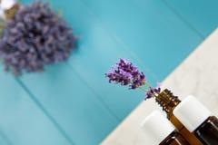 Ätherisches Öl des Lavendels stockbild