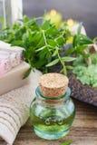 Ätherisches Öl des Myrtus (Myrte) lizenzfreie stockbilder