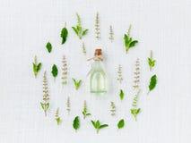 Ätherisches Öl mit heiligem Basilikumblatt und -blume Stockfotos