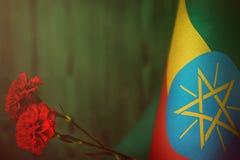 Äthiopien-Flagge für Ehre des Veteranentages oder -Volkstrauertags mit zwei roten Gartennelkenblumen Ruhm zu den Äthiopien-Helden lizenzfreie stockfotografie