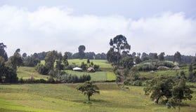 Äthiopische Bauernhöfe und Dorf Lizenzfreie Stockfotografie