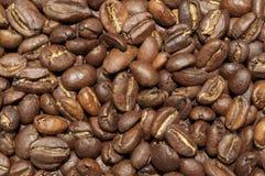 Äthiopische Yirgacheffe-Kaffeebohnen Stockfotografie