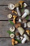 Ätliga lösa vita champinjoner, sopp, russule, kantareller på träbakgrunden Arkivfoto
