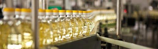 Ätliga oljor för fabrik för tillverkning av grunt Arkivbilder