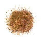 Ätligt kärna ur blandningen med den torra rädisan, senap, linser, alfalfafrö arkivfoto