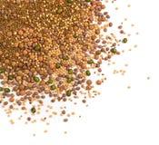 Ätligt kärna ur blandningen med den torra rädisan, senap, linser, alfalfafrö arkivbild