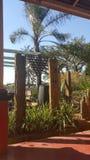 Äußerer Garten Stockbild