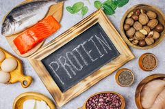 健康蛋白质来源和健美食物的分类 免版税库存图片