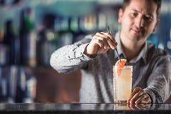 做酒精鸡尾酒饮料帕路玛的专业男服务员 免版税图库摄影