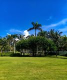 反对天空蔚蓝和光滑的绿色草坪的美丽的庭院 图库摄影