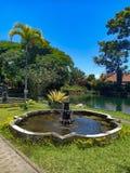 反对天空蔚蓝和湖的美丽的庭院 库存照片
