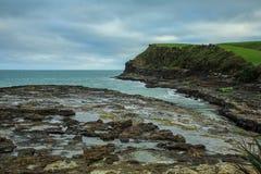 古玩海湾在南方,在古老化石森林Catlins的,南岛,新西兰的看法 库存照片