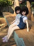 可爱的孪生玩偶命名了LICCA陈 图库摄影
