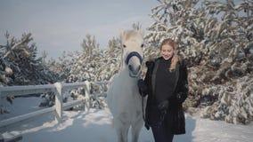 可爱的白肤金发的冲程和饲料她的手在一个多雪的国家大农场的一个美丽的白马 养马的概念 股票录像