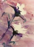 墙壁装饰的花卉背景水彩图画 库存例证