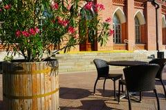 夏天与花的街道咖啡馆在历史建筑的背景 库存照片