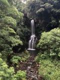 夏威夷供徒步旅行的小道希登瀑布大岛 库存图片