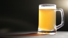 大杯子冷光金新啤酒转动被隔绝在黑点燃的背景 影视素材