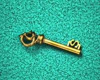 大数据,金美元的符号珍宝钥匙在字符背景中 免版税库存照片