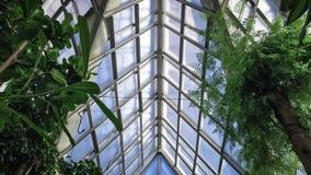 天空和玻璃从温室 免版税库存照片
