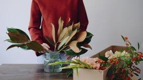 女性卖花人在一个玻璃花瓶和做投入花新的植物布置 采摘从箱子的妇女鲜花 股票视频