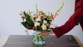 女性卖花人在一个玻璃花瓶和做投入花新的植物布置 采摘从箱子的妇女鲜花 股票录像