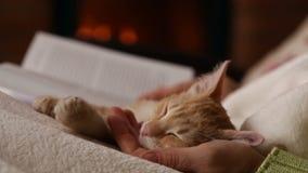 妇女手读了一本书在壁炉-拿着她睡觉小猫 股票视频