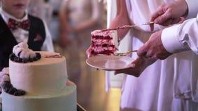 婚礼庆祝蛋糕 影视素材