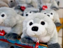 孩子的软的玩具商店的柜台的 库存图片