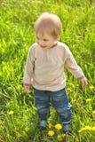 室外愉快的童年,绿草的一点白肤金发的男孩 库存照片