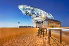 安特卫普总部口岸黄昏的与天空蔚蓝,富兰德,比利时 图库摄影
