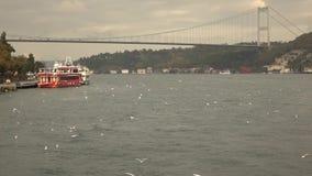 对7月15日受难者的乐声牌视图在日落多云天空背景跨接与飞鸟的 Bosphorus海峡 影视素材