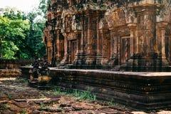 寺庙吴哥窟在柬埔寨,ta Prohm,暹粒市 库存照片