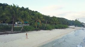 寄生虫走在海岸的沙滩的视图妇女 去在地平线的热带海滩的空中风景女孩 股票录像