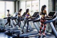 小组跑在现代体育健身房的踏车的年轻女人人 图库摄影