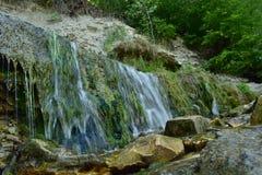 小瀑布在有岩石的森林里 库存图片