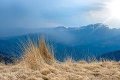 山自然风景视图、草和强的太阳光芒、美好的背景设计的和卡片 早春天风景 库存照片