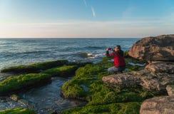 岩石海滨的旅客长满与拍照片的绿藻类 免版税库存图片