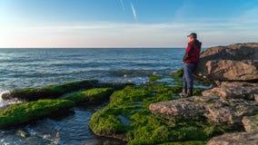 岩石海滨的旅客长满与绿藻类 免版税库存照片