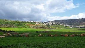 巴勒斯坦当局在以色列 免版税图库摄影