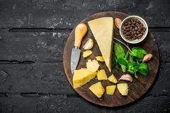 帕尔马干酪用大蒜、松果和薄荷叶 免版税库存照片
