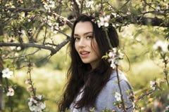 年轻可爱的深色的女孩在开花的庭院里 库存图片