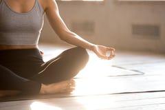年轻运动的信奉瑜伽者女子实践的瑜伽,做容易的位子锻炼 免版税库存照片