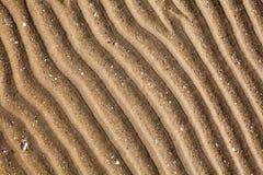 Żółty złoty piasek na morze plaży odgórnym widoku zamkniętym w górę, żebrujący suchy piasek powierzchni wzór, falista wyginająca  obrazy royalty free