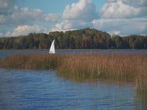 Żaglówka unosi się na jeziorze zbiory wideo
