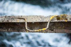 Żelazny poręcz nad wody rdzą od starości zdjęcie stock