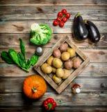 Żywność organiczna dojrzali warzywa obrazy stock