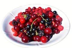 很多不同的莓果有在板材的白色背景 免版税库存照片