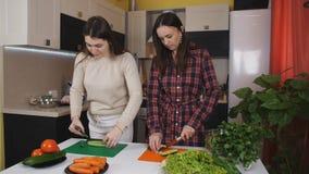快乐的中年妇女搅拌碗新鲜的沙拉,当烹调健康食品与她的现代的时姐妹一起 股票视频